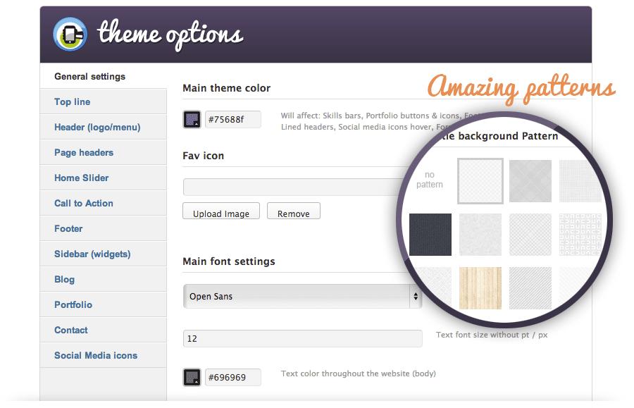 admin-options-panel